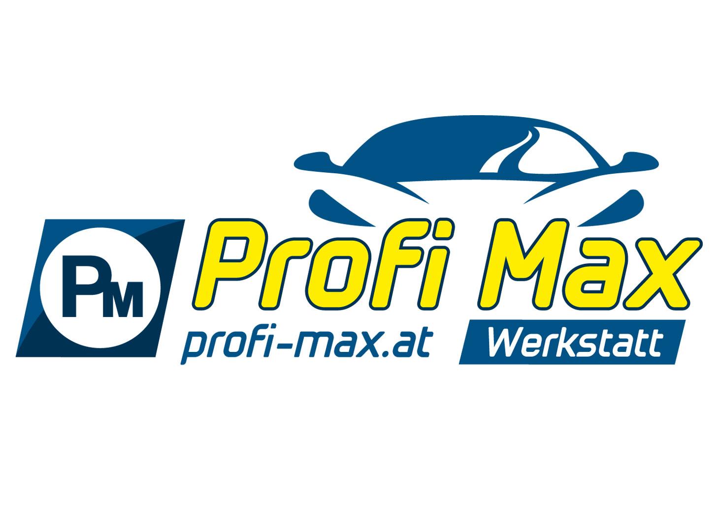 Profi Max KFZ-Fachwerkstatt